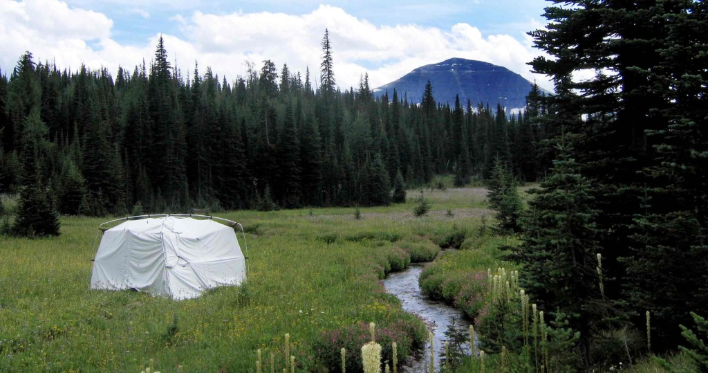portable camera obscura in Riggall's Meadow, Waterton Lakes National Park