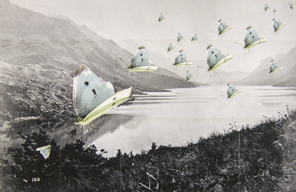 Image of a photocollage showing Dawson's 1874 image of present day Waterton Lake with collaged butterflies by Trudi Lynn Smith