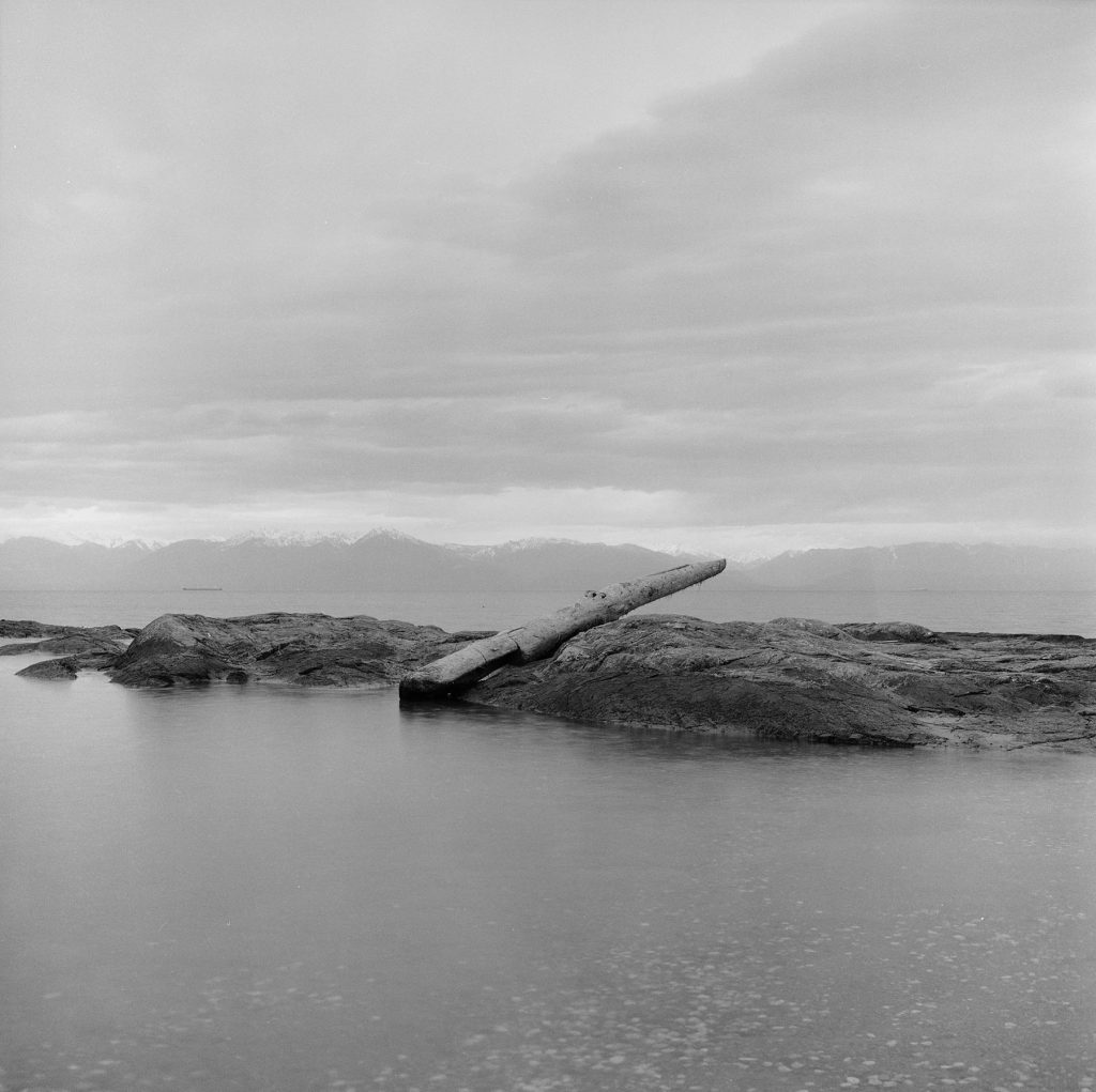 Drift log photograph in the Salish Sea showing Ocean, Olympic Mountains and a balancing log on a rock. 2018. Trudi Lynn Smith